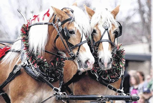 Downtown Greenville Horse Parade Buffet 2019